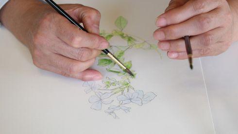 こだまみえこ作品展 リマージュボタニック~花の肖像画 ワークショップ